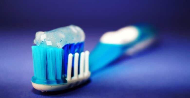 كيف تختار فرشاة أسنان الكلب؟