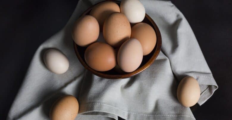 هل يمكنني إعطاء بيضة لكلبي؟