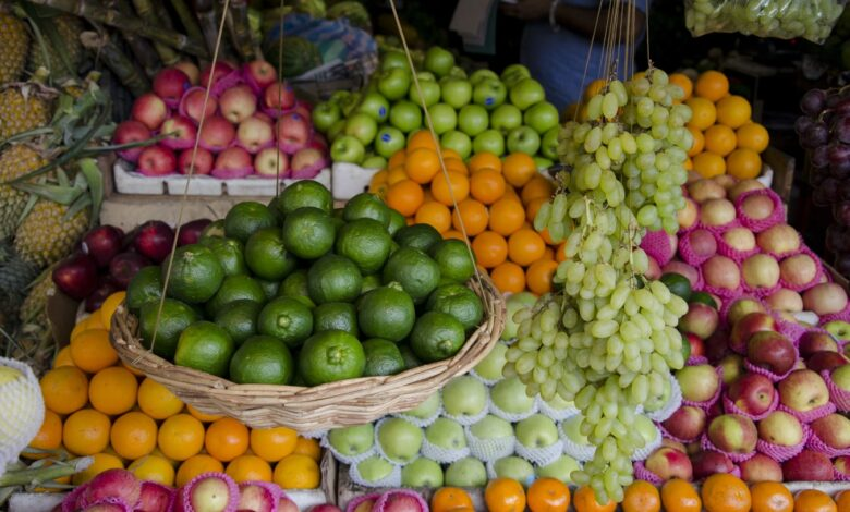 ماهي الفواكه التي يمكن أن نعطيها للكلاب؟
