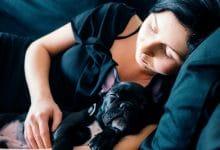 كيفية جعل كلبك ينام